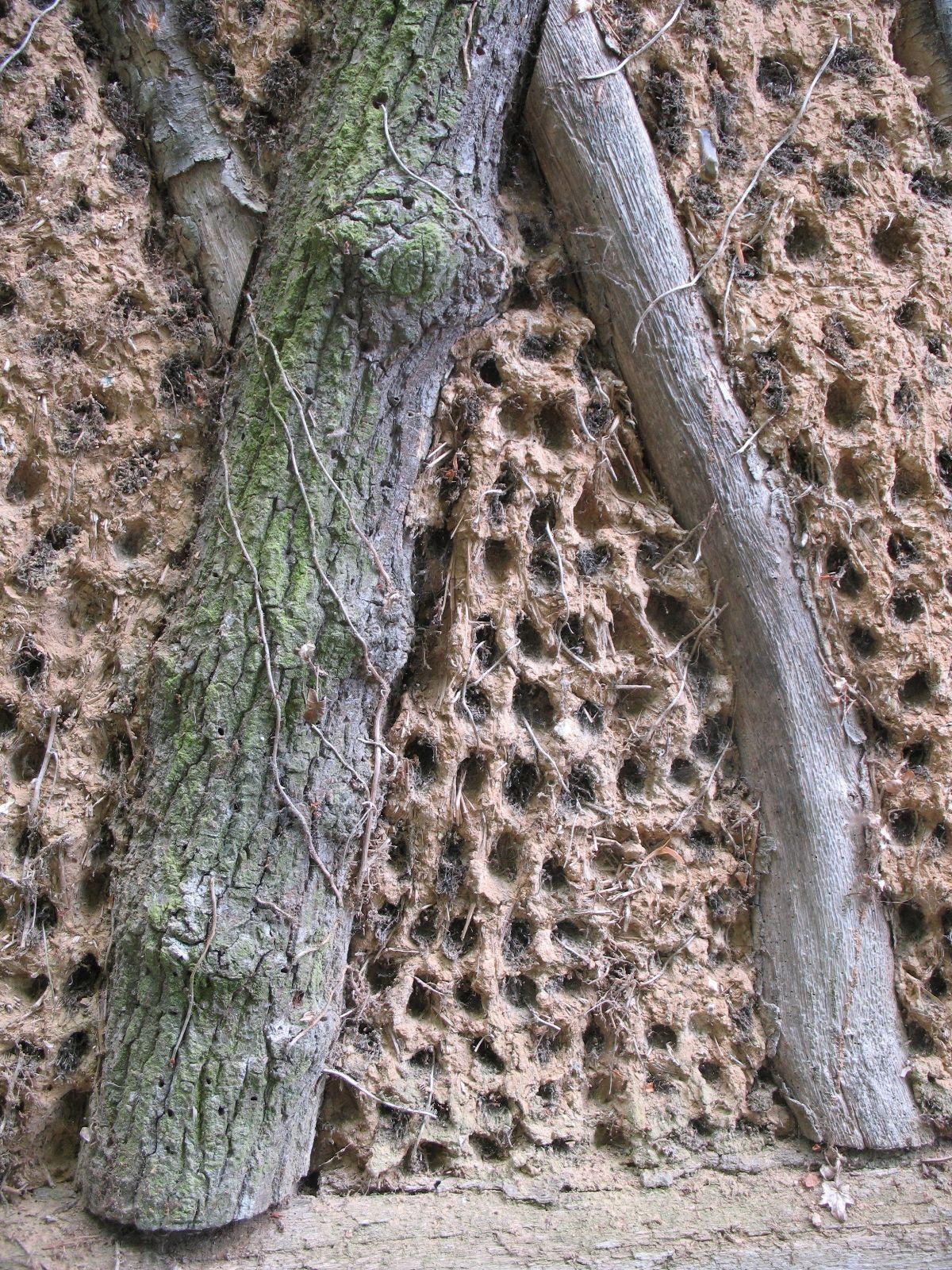Swelheim Sieraden Muur