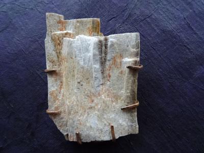 Broche versteend hout